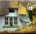 Adare thatching